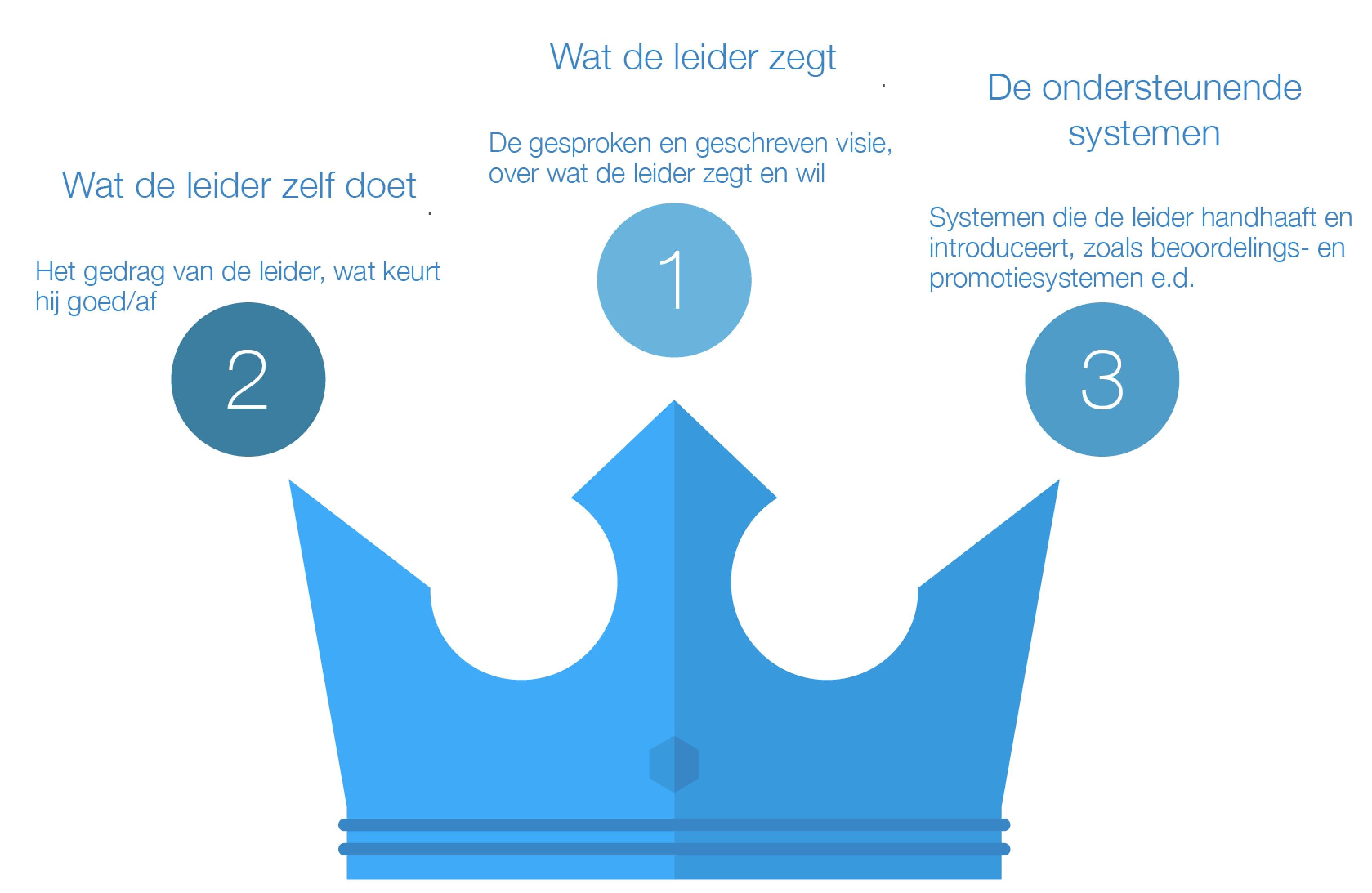 De 3 talen van de leider met of zonder echte visie